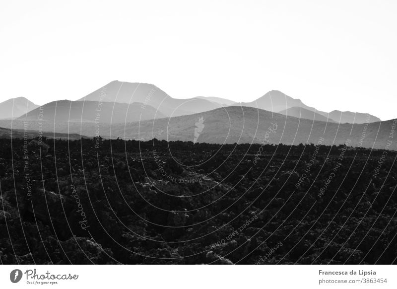 Lava field on Lanzarote Volcano Landscape Black & white photo Exterior shot Vacation & Travel Deserted Island Mountain Nature Far-off places Copy Space top