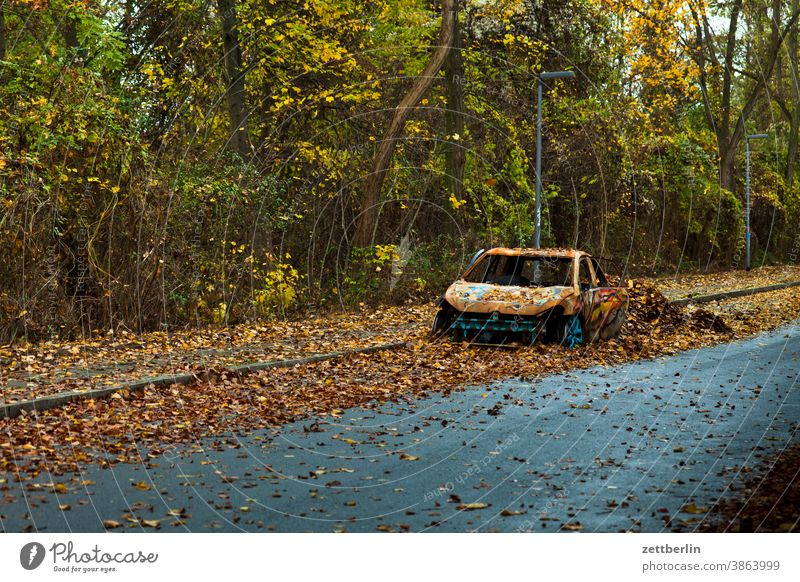 Car wreck in autumn car Broken broken corrupted Rust gutted scrapped Autumn Autumn leaves Foliage colouring Wrecked car off Street Country road Scrap metal