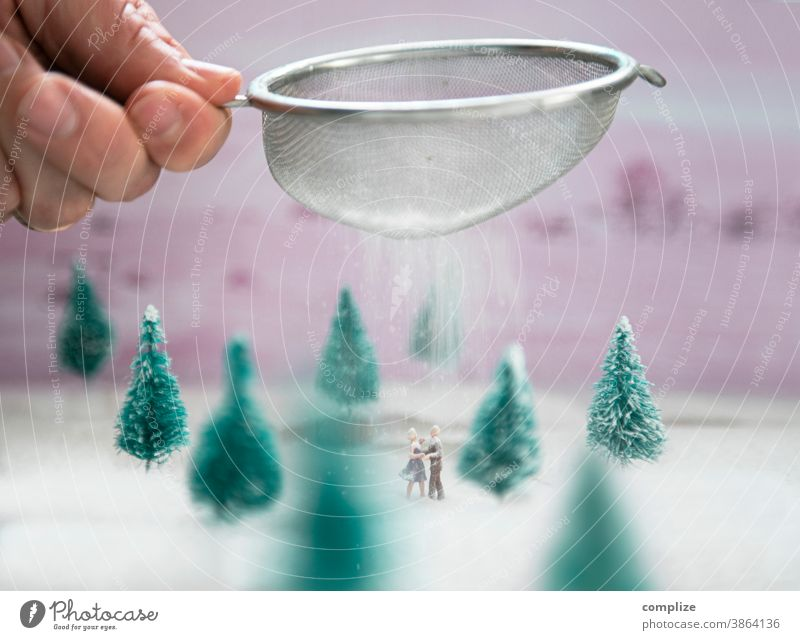 Ice dance in icing sugar snow Confectioner`s sugar Sugar Dance ice dance Forest Winter Winter vacation Fir tree Christmas tree Decoration Small Miniature