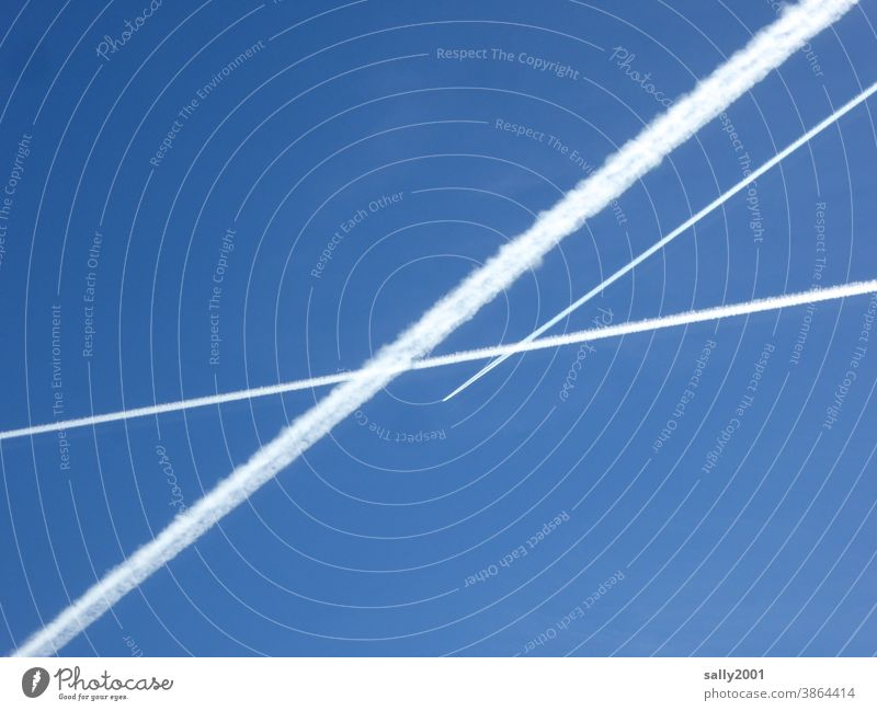 celestial crossroads... Vapor trail Airplane air traffic Sky Blue sky Contrast Aviation Flying Clouds Vacation & Travel Beautiful weather Worm's-eye view lines