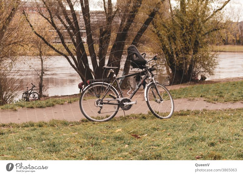 Bicycles on the banks of the Elbe in Dresden Cycling Child seat Transport Exterior shot Lanes & trails Road traffic Leisure and hobbies Movement Cycle path
