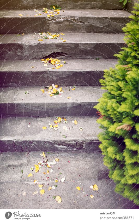 Proof of Happiness I Art Esthetic Contentment Wedding Wedding ceremony Wedding party Stairs Rose leaves Decoration Colour photo Subdued colour Exterior shot