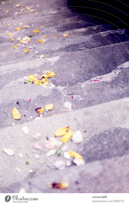 Proof of Happiness II Garden Esthetic Contentment Wedding Wedding ceremony Wedding party Stairs Rose leaves Decoration Colour photo Subdued colour Exterior shot