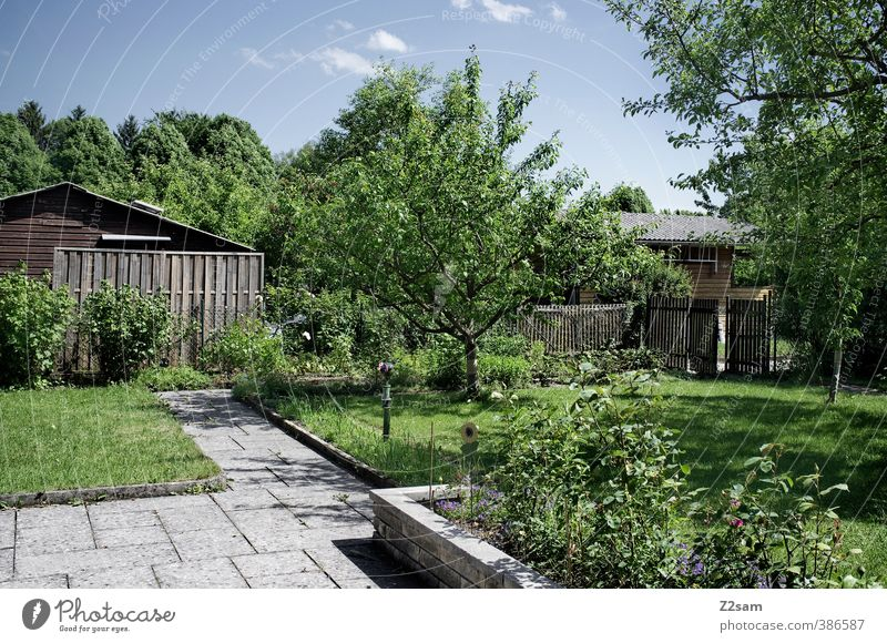 Sky Nature Green Summer Tree Relaxation Flower Calm House (Residential Structure) Meadow Grass Natural Garden Leisure and hobbies Idyll Living or residing