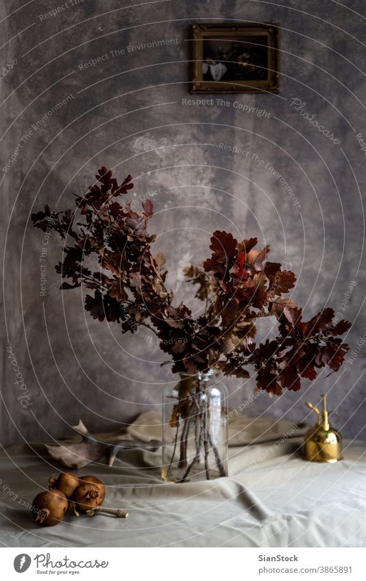 Bouquet of dried flowers in a glass vase. brown home woman bouquet nature beautiful beauty plant green petal color table vintage decoration background blossom