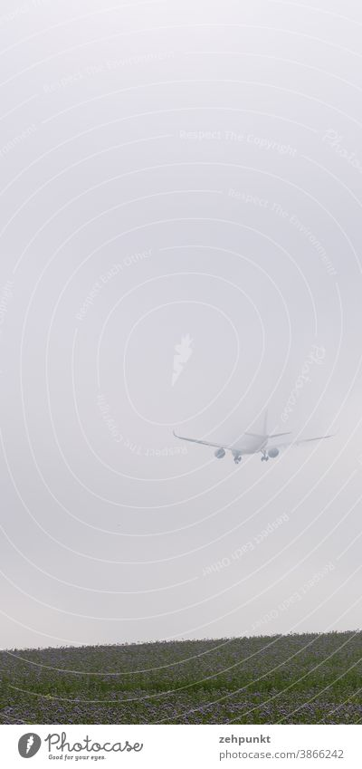 An Airbus A359 disappears into high fog during landing approach. Airplane Fog High fog Meadow Flower meadow clear Aviation Airport Airplane landing Clouds