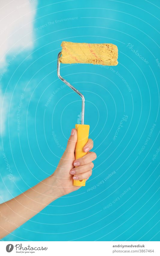 close up of female hand holding paint yellow roller over blue background-repair, construction and building tools concept. Convenient and versatile tool for painting walls.