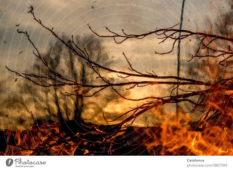 Life break | when fires rage Fire Fires ardor Embers ash blaze incinerate sb./sth. Fireplace Glow Wood Warmth Light Hot Smoke Dangerous sprawling Day daylight