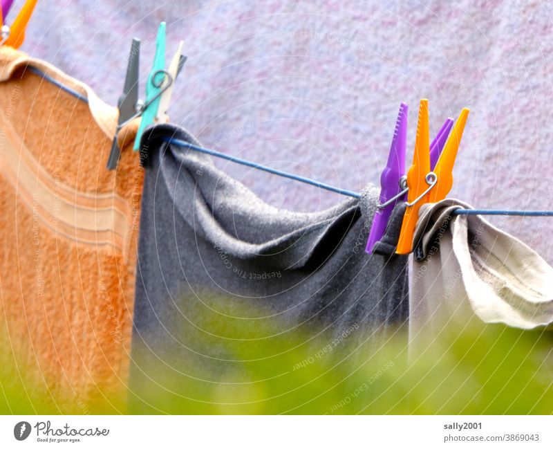 Colour combination... ...on the clothesline... clothespin Laundry Washing day Hang up Dry variegated Towel Towels Household out Hedge Garden Rope neat Fresh