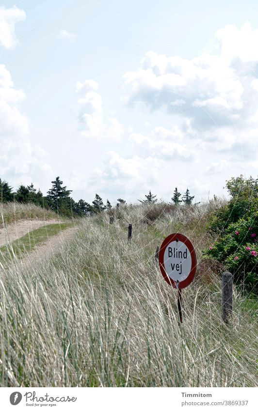 A nice path with a pretty sign Denmark vacation off Signage No through road Deserted Transport Signs and labeling flora Sky Clouds Vacation mood grasses