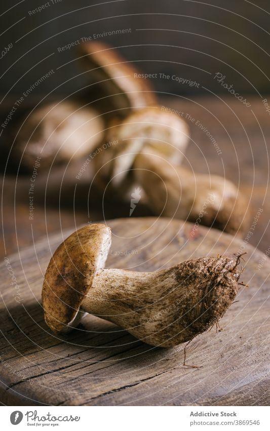 Porcini mushrooms on wooden table porcini boletus edulis cep fresh raw edible fungus organic food natural nutrition rustic ingredient vegan penny bun vegetarian