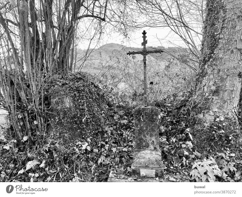 Memorial cross on a forest path off hiking trail Forest Shrubbery shrub Tree mountain Crucifix Death forest work Accident at work Metal cross Iron Cross