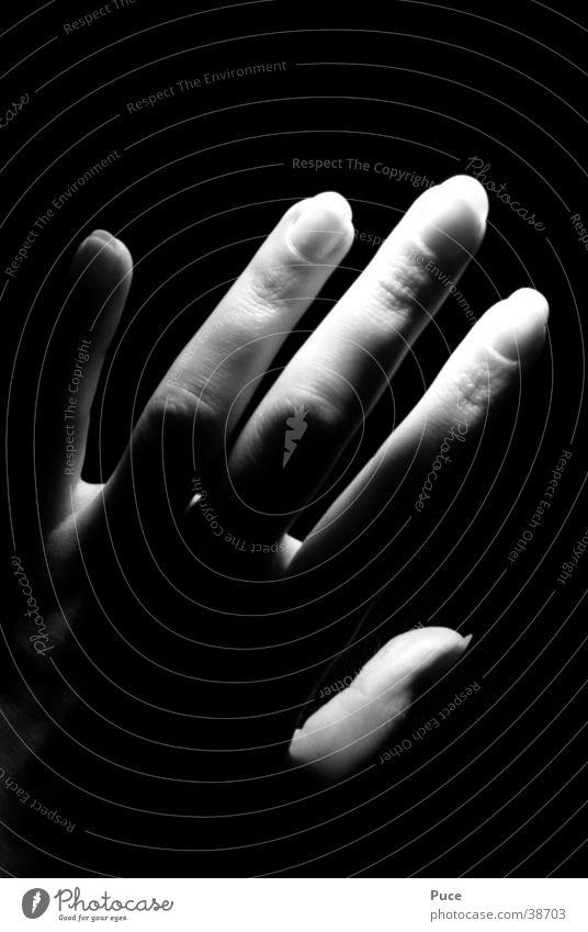 Woman Hand Fingers Fingernail