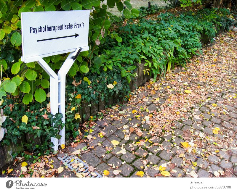 Psychotherapeutic practice Psychology psychotherapy Therapy Medical practice Signs and labeling Arrow Signage Lanes & trails Plant