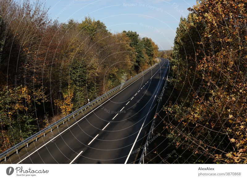 Landscape photograph of an empty street surrounded by trees and crash barriers in autumn Street Country road Motorway Freeway Median strip Tar Crash barrier
