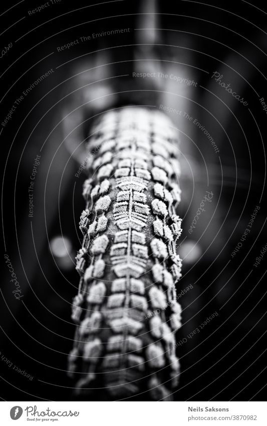 frosty bicycle tire Action active bicycling bike biking competition cyclist foggy forest frame front frozen fun hobby ice landscape melted motion mountain bike