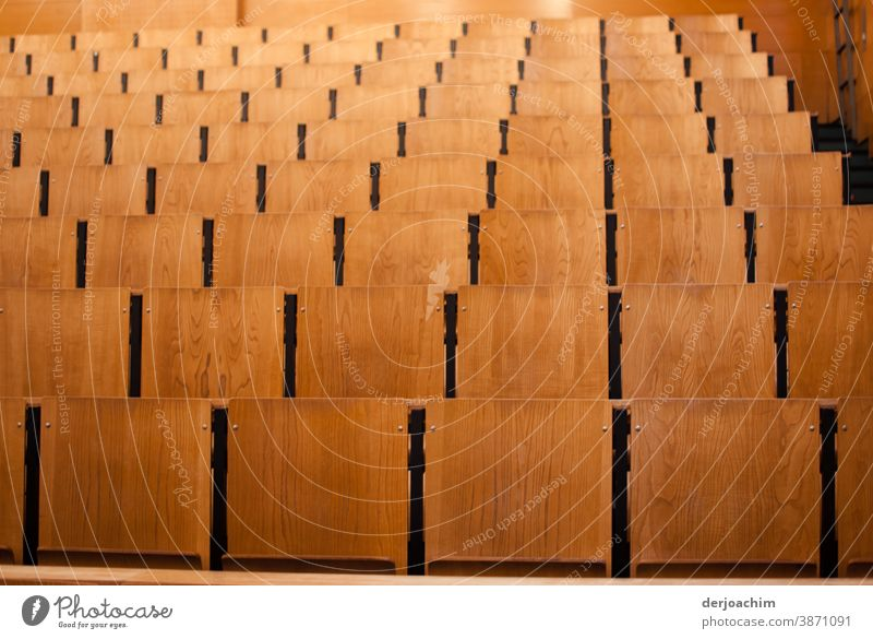 An empty lecture hall, lots of wooden chairs Lecture hall Colour photo Education Academic studies Deserted Adult Education Interior shot