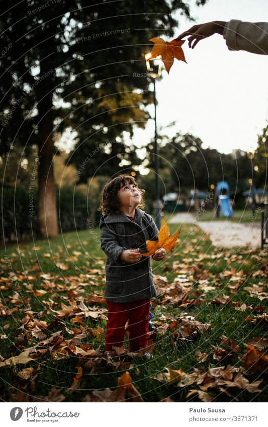 Child playing with autumn leaves 0-09 years Lifestyle affectionate authentic caring casual caucasian child color curiosity curly hair daughter day enjoyment