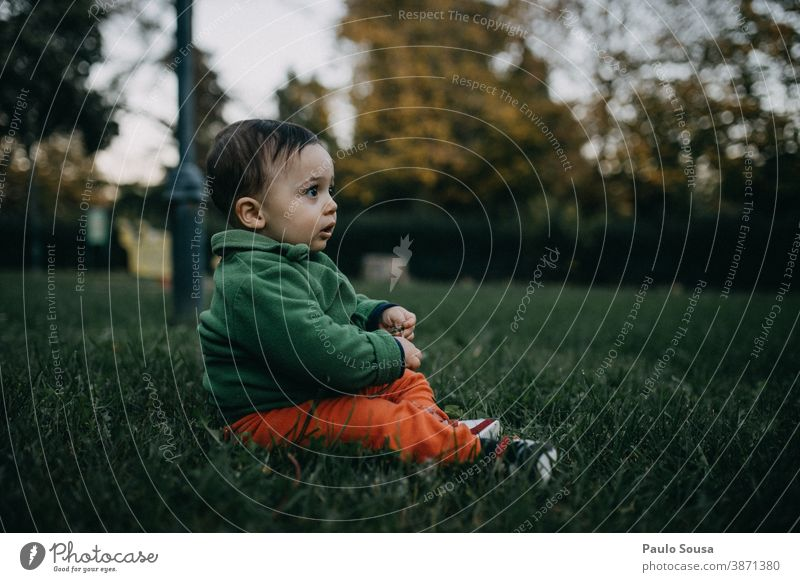 Toddler playing on the grass Authentic Autumn Autumnal Grass Child Park Colour photo Human being Autumnal colours Exterior shot Autumn leaves Playing