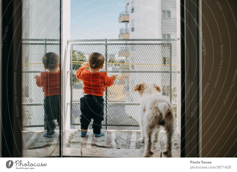 Toddler and dog at the balcony Balcony balconies Dog Pet Together togetherness love caucasian friendship young lifestyle pet casual clothing adorable cute