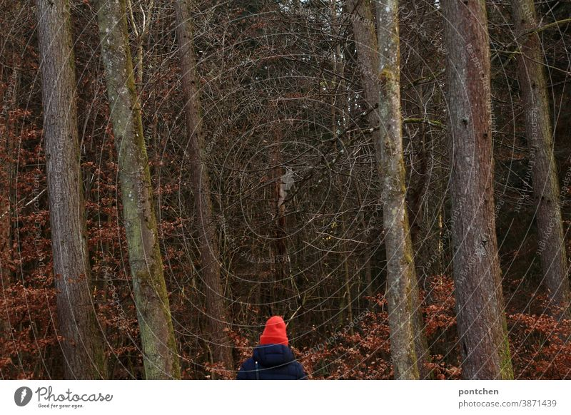 A woman in a bright red cap and winter coat is standing in the forest Cap Red Forest trees Autumn Winter winter clothes Coat foliage leaves Relaxation Oxygen