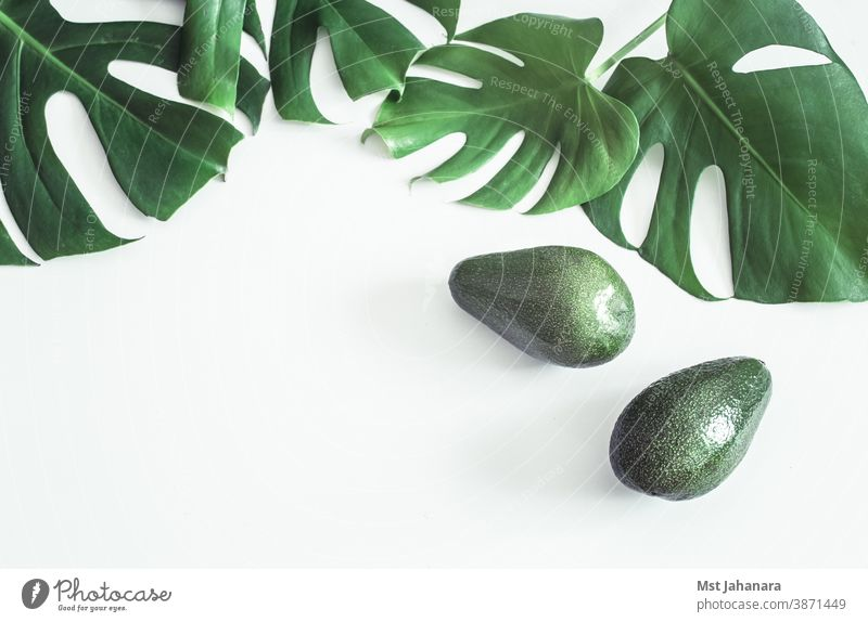 Avocado with tropical leaves on white background avocado salad isolated fresh food fruit green health healthy nature organic summer vegetarian vitamin oil cut