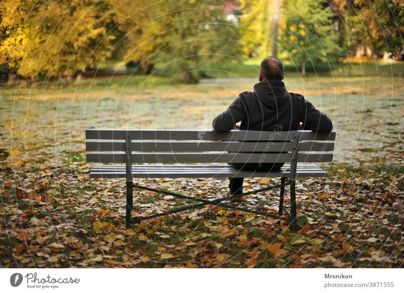 recreation on one's own out Park Lonely tranquillity To enjoy Autumn Lake leaves Autumn leaves Nature Loneliness Autumnal Forest Autumnal colours Man Bench