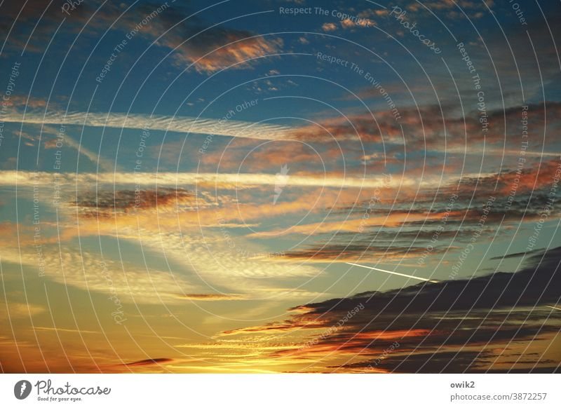 Last glimmer Sunset Sunlight Light Twilight Evening Copy Space top Deserted Exterior shot Structures and shapes Colour photo Dusk Cloud formation Far-off places