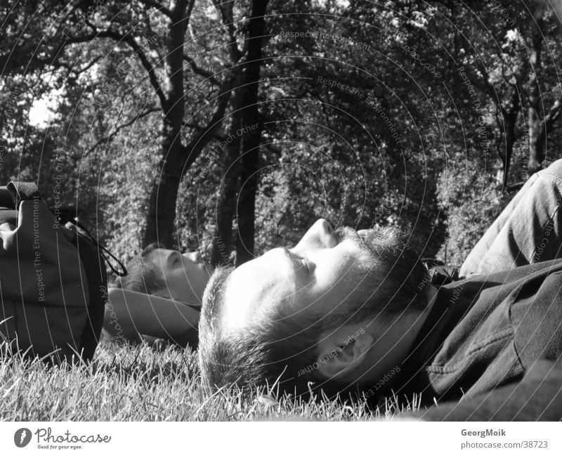 London parking napkin Park Tree Sleep Meadow Man two men