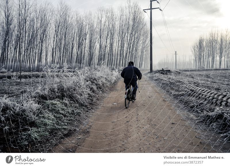man on bycicle along a road in po valley during winter flat field lomellina italy padana pavia fog tree countryside rural nature farm desert season dark