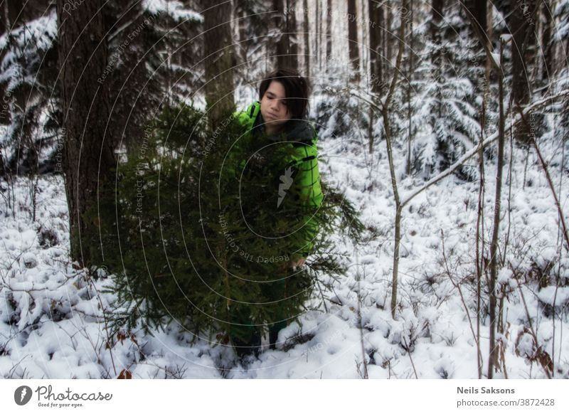 Young man brings a Christmas tree from winter forest overcoming snowdrifts and snowfall. Christmas holidays. Bring carry celebration cheerful cut December eve