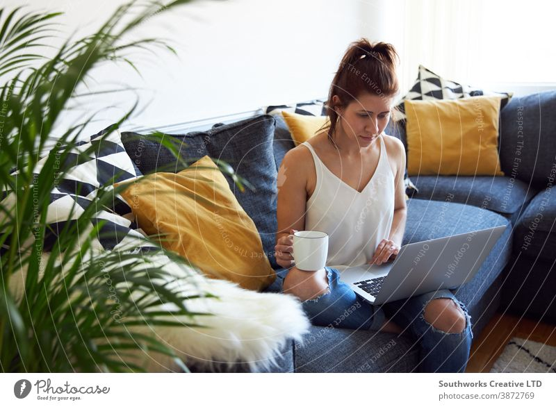 Young female working on laptop on sofa. caucasian young woman home 20s brunette computer work from home person writing indoors student studying browsing