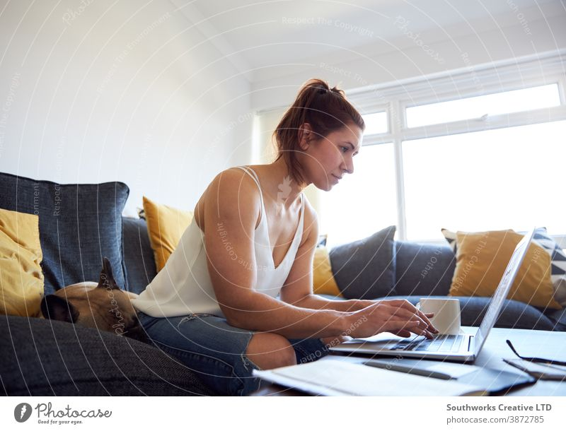 drinking coffee happy young woman female working home laptop sofa 20s brunette computer work from home person writing indoors student studying browsing