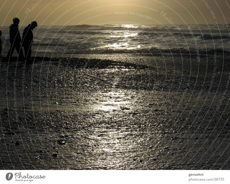 horizon in gold Tide Waves Coast Beach Sunset Reflection Silhouette 2 Child Boy (child) North Sea High tide Stone Observe Looking