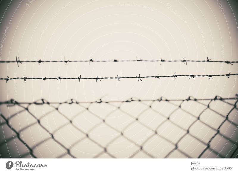 Barbed wire fence in dark autumn weather - trapped or free grey sky Bad weather prickles Fence Wire Wire netting fence Thorn Wire fence Free porous Protection