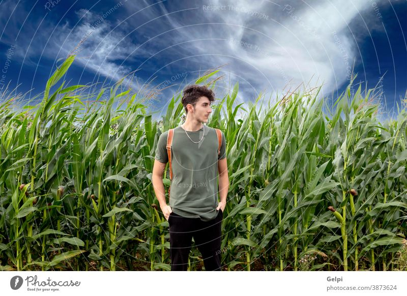 Relaxed handsome guy outside person man walker corn harvest lifestyle hike nature trekking hiking summer young trip landscape outdoor travel free holiday