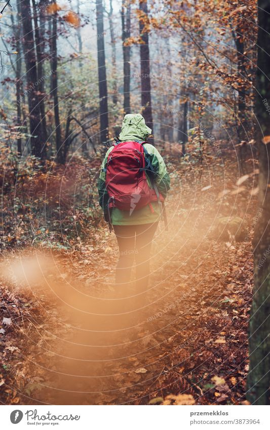 Woman with backpack wandering around a forest on autumn cold day active activity adventure backpacker destination enjoy exploration explore fall female green