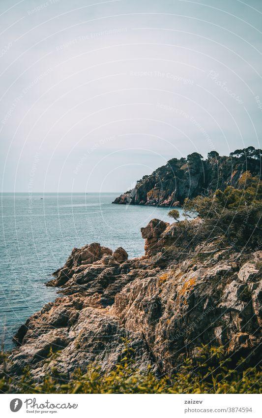 Vertical landscape of a rocky coast with some vegetation costa brava calella de palafrugell palamós views sea water mediterranean catalonia breakwater boulder