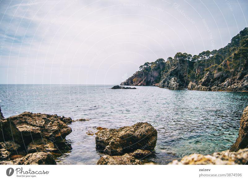 An abrupt rocky cliff full of trees in the mediterranean sea costa brava calella de palafrugell palamós landscape water catalonia views breakwater boulder rocks