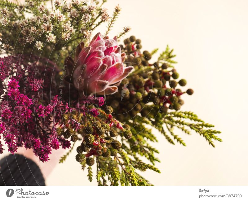 Beautiful autumn flowers bouquet in female hand. background pink protea field floral winter bunch mixed wild spring nature woman vintage arrangement texture