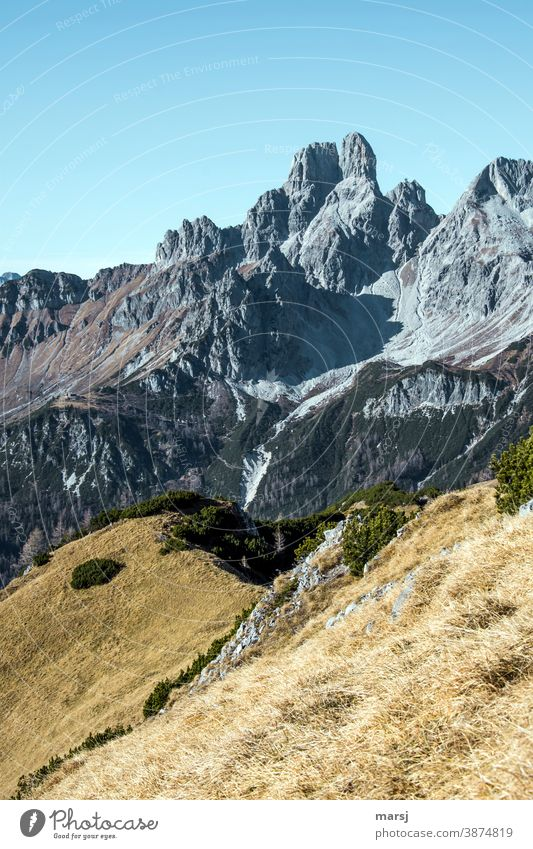 Autumn in the mountains. With the bishop's mitre Mountain Hiking Alps Rock Peak Landscape Nature Vacation & Travel Tourism Austria Autumnal Gray