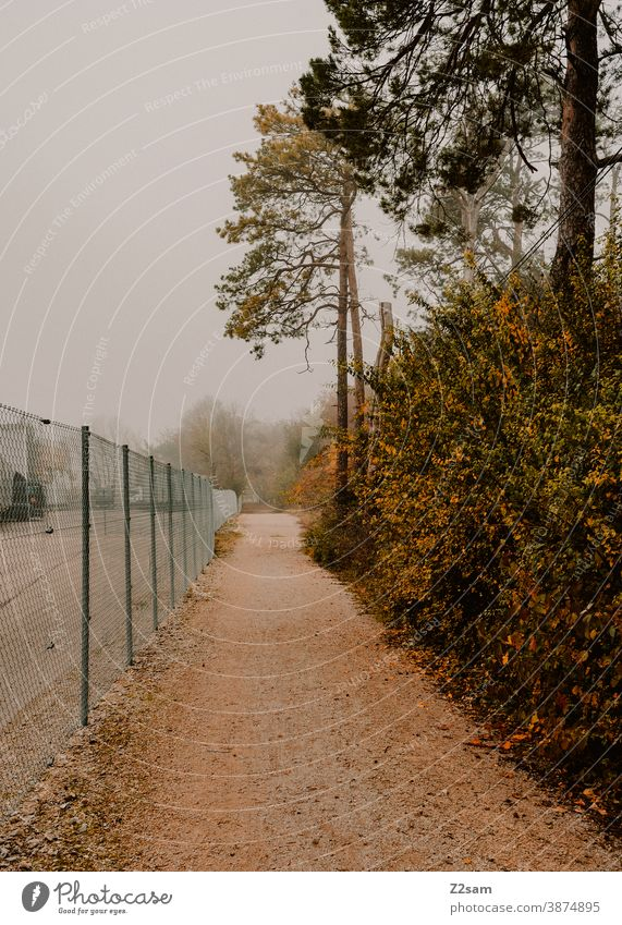 Pedestrian walkways on the edge of an industrial area with adjacent forest go for a walk off warm Fog Autumn autumn colours trees Bushes Nature Landscape Fence