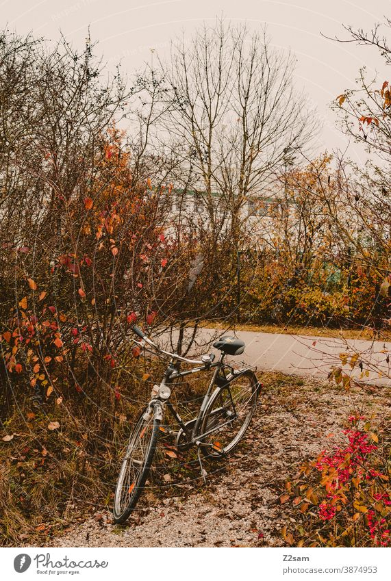 Lonely bicycle in autumn landscape Bicycle Autumn Autumnal landscape Wheel Parking switch off men's bicycle sustainability Sustainability Means of transport