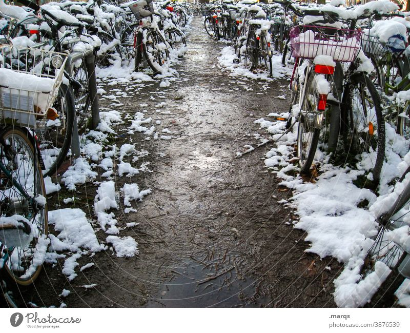 Snowy bicycle parking Bicycle Many Winter Bicycle lot Parking Cold snow-covered Town Mobility Lanes & trails