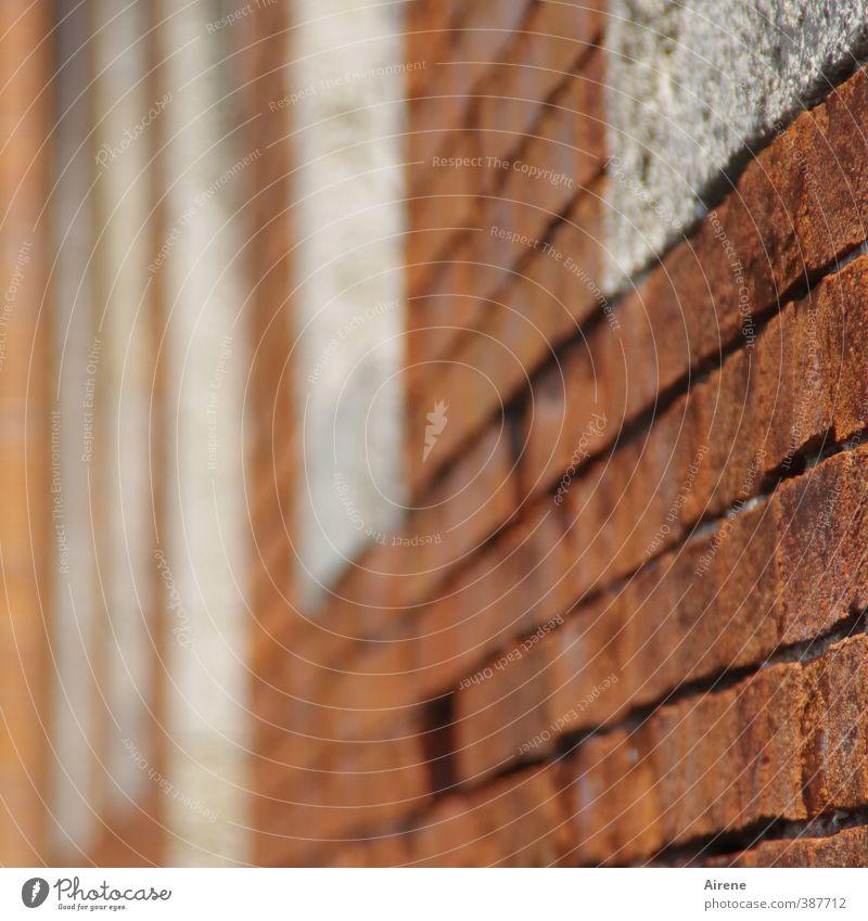 fleeing facade Bad Reichenhall Town Old town Deserted Wall (barrier) Wall (building) Facade Window Brick Brick red Brick construction Brick facade
