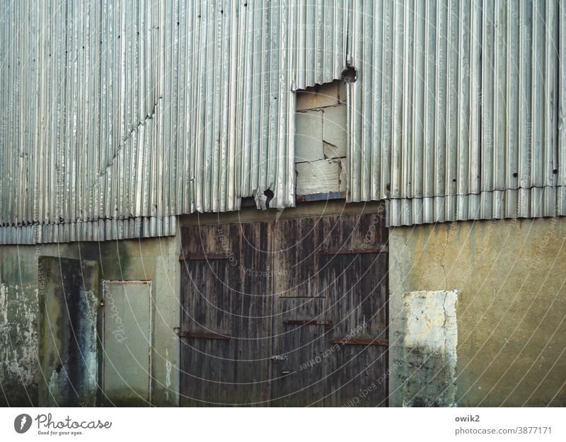 Oll Corrugated iron wall Wall (barrier) Depot Warehouse Hall Metal Colour photo Gray Detail Pattern Structures and shapes Exterior shot Deserted Copy Space left