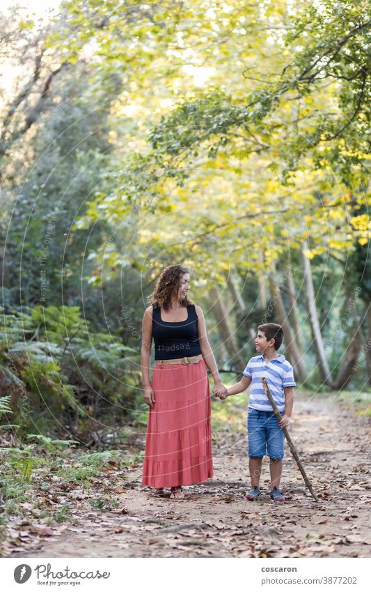 Woman and kid walking through the woods adventure backpack boy caucasian child childhood children family forest hand happiness happy hike hiker hiking holiday