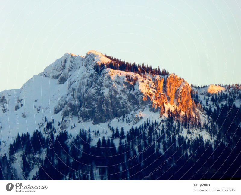the last rays of sunshine of the day... camping wall Chiemgau Chiemgau Alps Upper Bavaria Mountain Winter Snow Sunset alpenglow Peak Landscape Nature