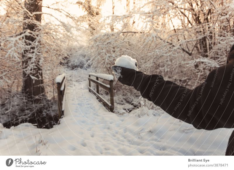 Hand with snowball in front of snow-covered wooden bridge background pretty Beauty & Beauty Bridge Cold Covered Environment Forest Fresh Landscape Light