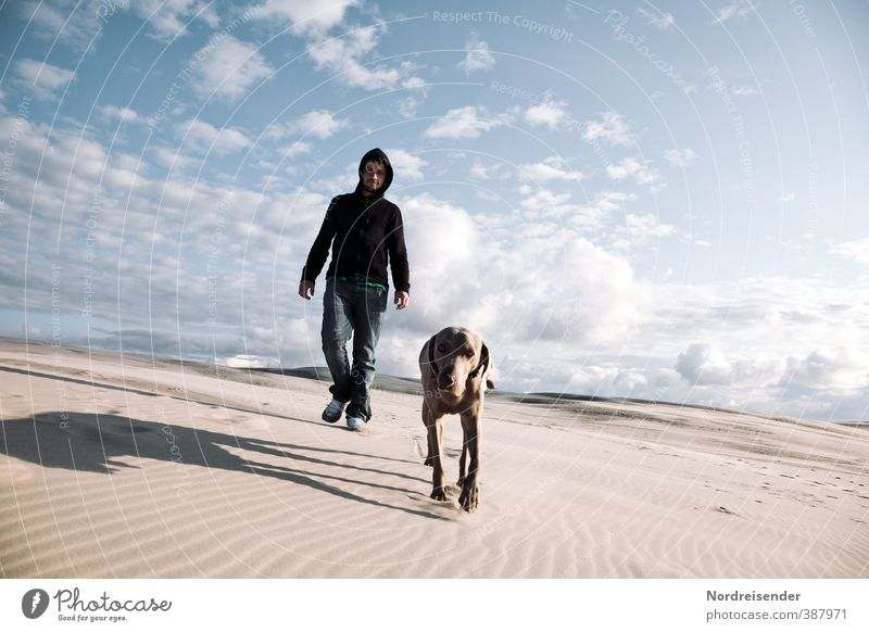 Dog Human being Sky Youth (Young adults) Man Vacation & Travel Summer Animal 18 - 30 years Adults Life Lanes & trails Freedom Sand Horizon Walking